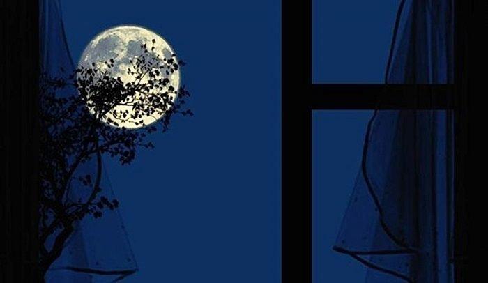 Луна за окном